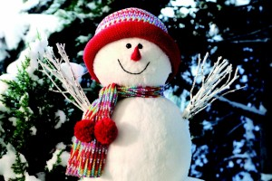 2011-12-Winter-Fair-131773766974